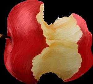 яблоки обгрызанные