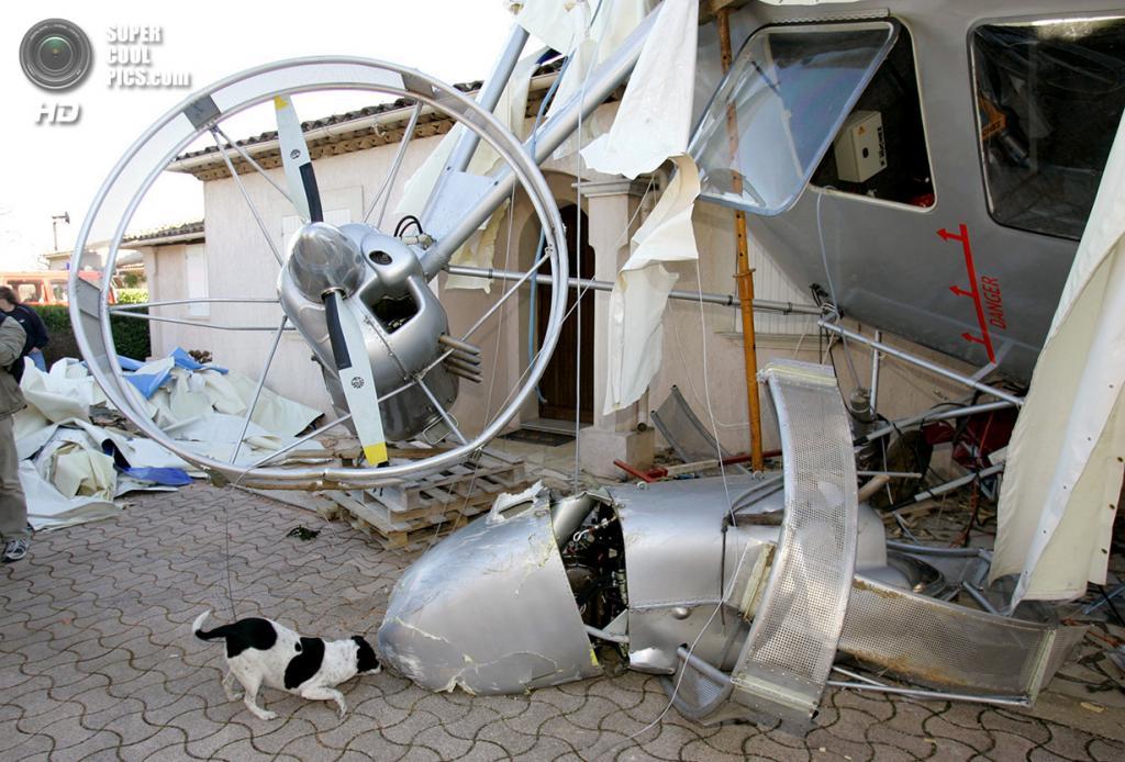 Франция. Туретт, Лазурный берег. 22 января 2008 года. Собака обнюхивает повреждённый дирижабль ф