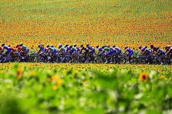 10. Франция — родина велосипеда. 11. Франция — родина балета. 12. Франция — родина