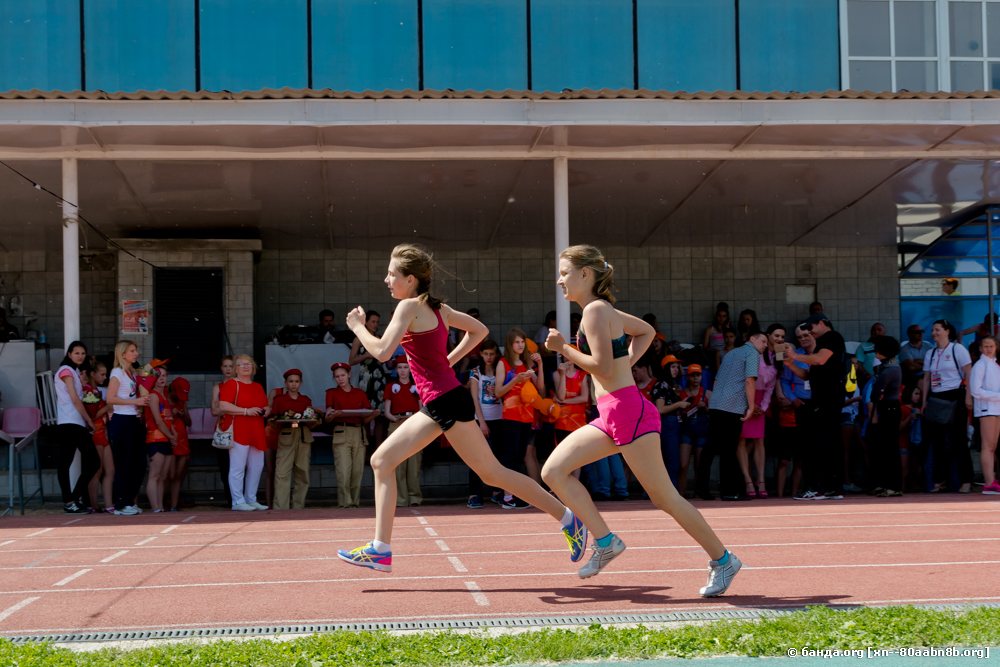 Соревнования по легкой атлетике / 2017