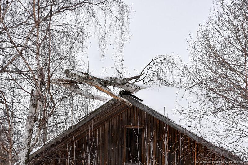 Оригинальный конёк на крыше дома