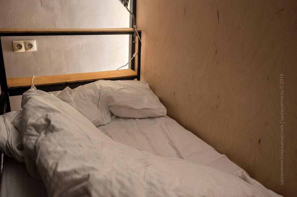 derevo_hostel