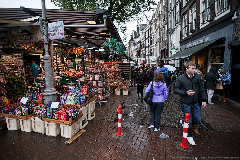 Все дни пребывания в Амстердаме, меня не переставало удивлять то, как лаконично и обдуманно интегрир