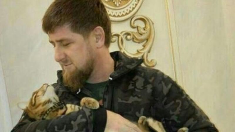 Рамзан Кадыров предложил свою помощь ворганизации поездки вЧечню финского репортера