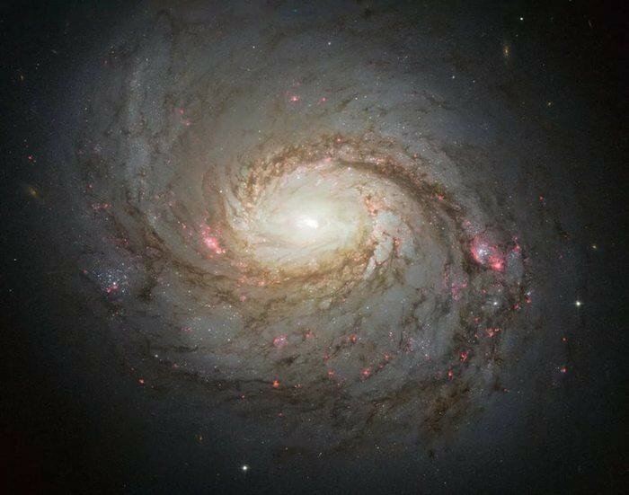 Красивые фотографии туманности Ориона, сделанные телескопом «Хаббл»