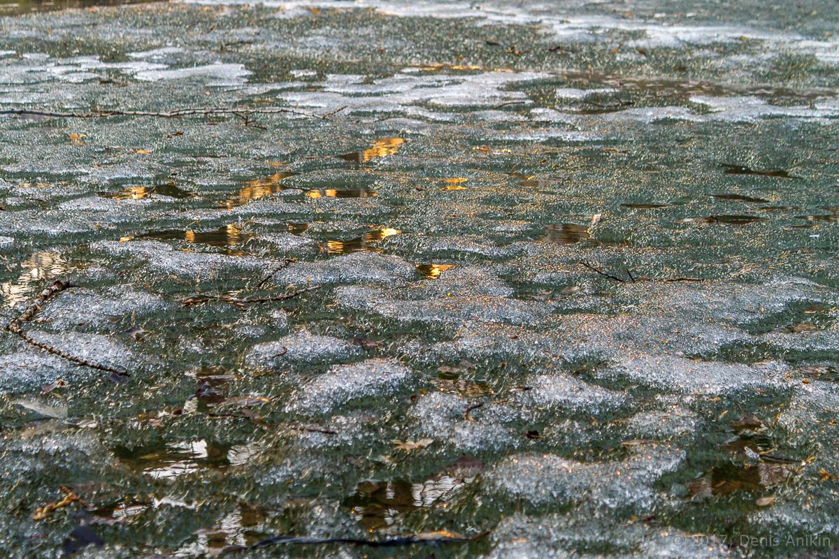 городской парк весна саратов фото 6