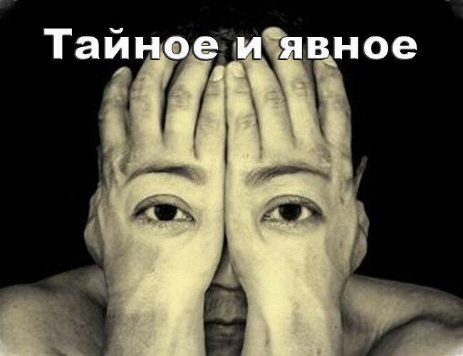 taina_yavna-1.jpg