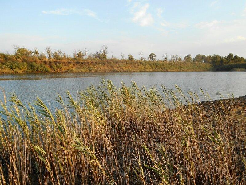У озера ... DSCN8515.JPG