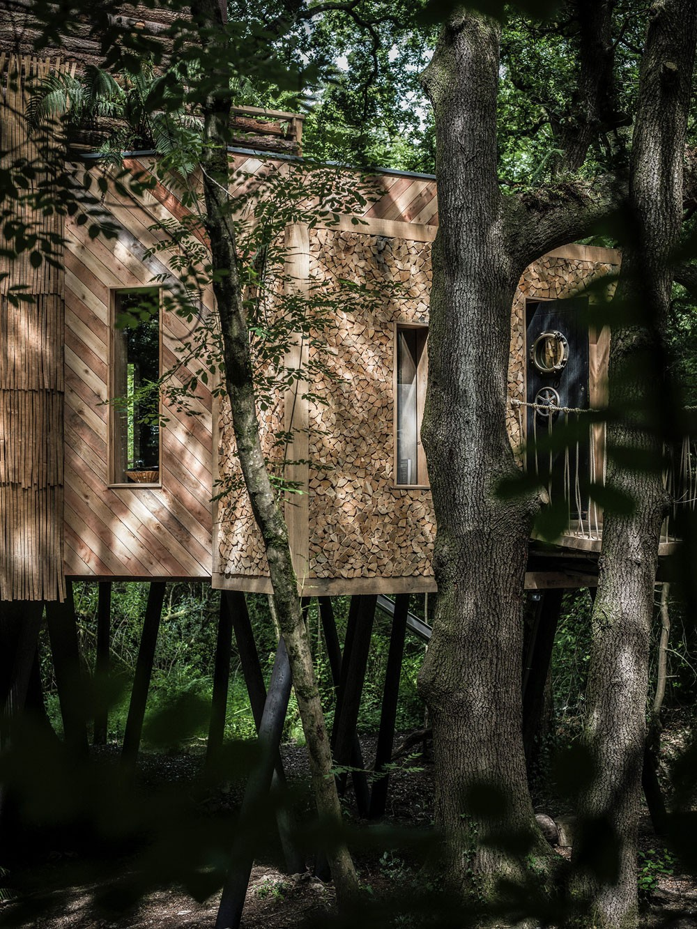 Домик на дереве в Англии