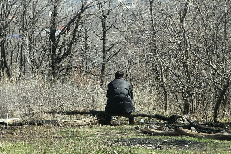 Кумыска, Саратов, 21 апреля 2017 года