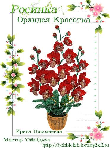 """Галерея работ творческой мастерской """"Орхидея Красотка"""" 0_12ea2f_3a791c43_L"""