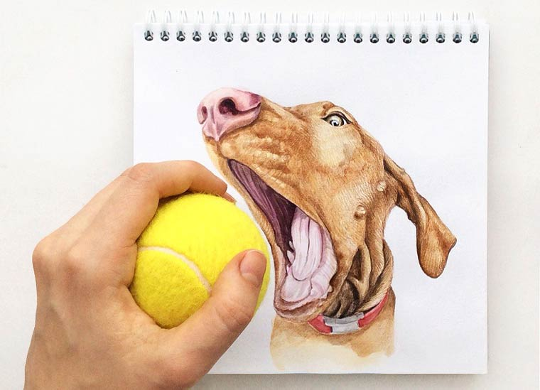 Interactive Dogs - Des illustrations amusantes