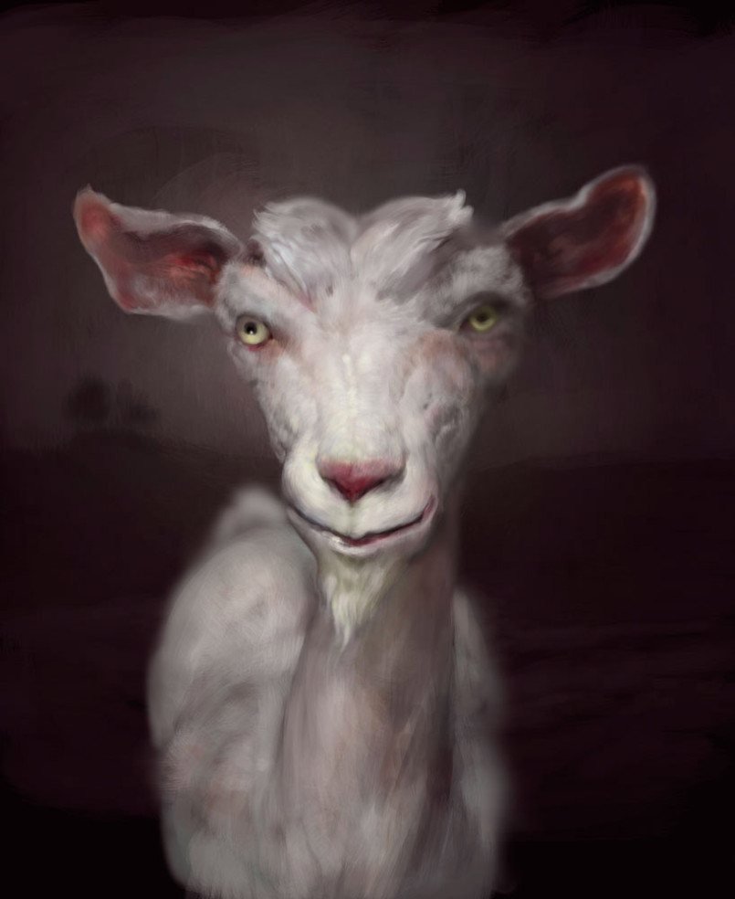 Animal Paintings by Burton Gray