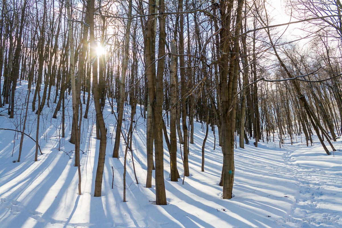 терренкур октябрьское ущелье зима Саратов фото 3