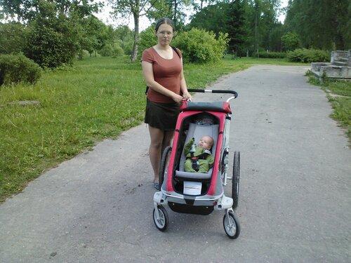 младенец в велоприцепе thule