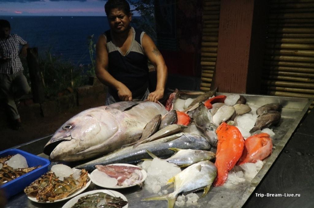 Рыбное изобилие в Керале