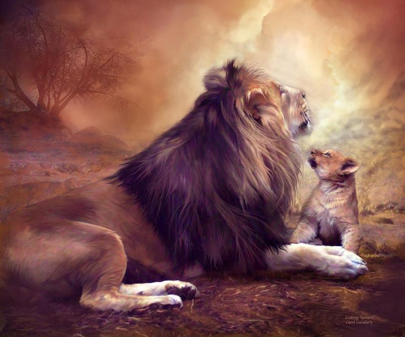 лев под знаком льва