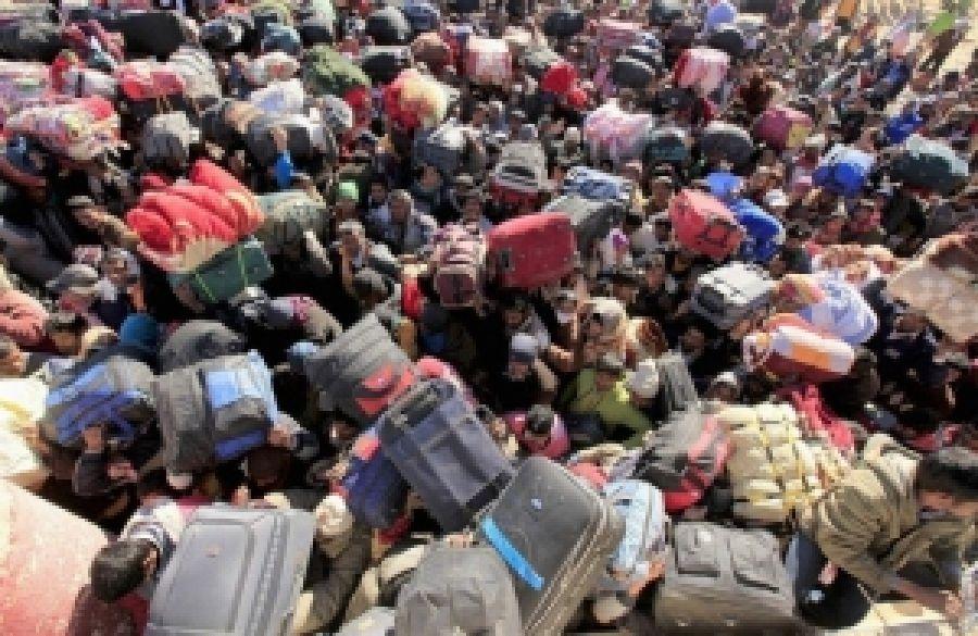 Киевщина примет мигрантов из Сирии?
