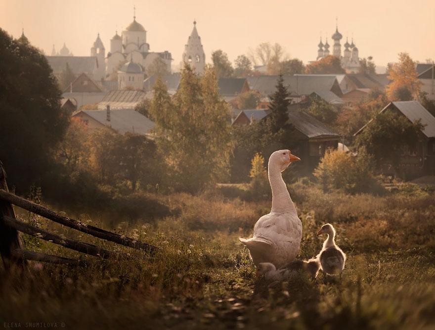 Город Суздаль, Россия.