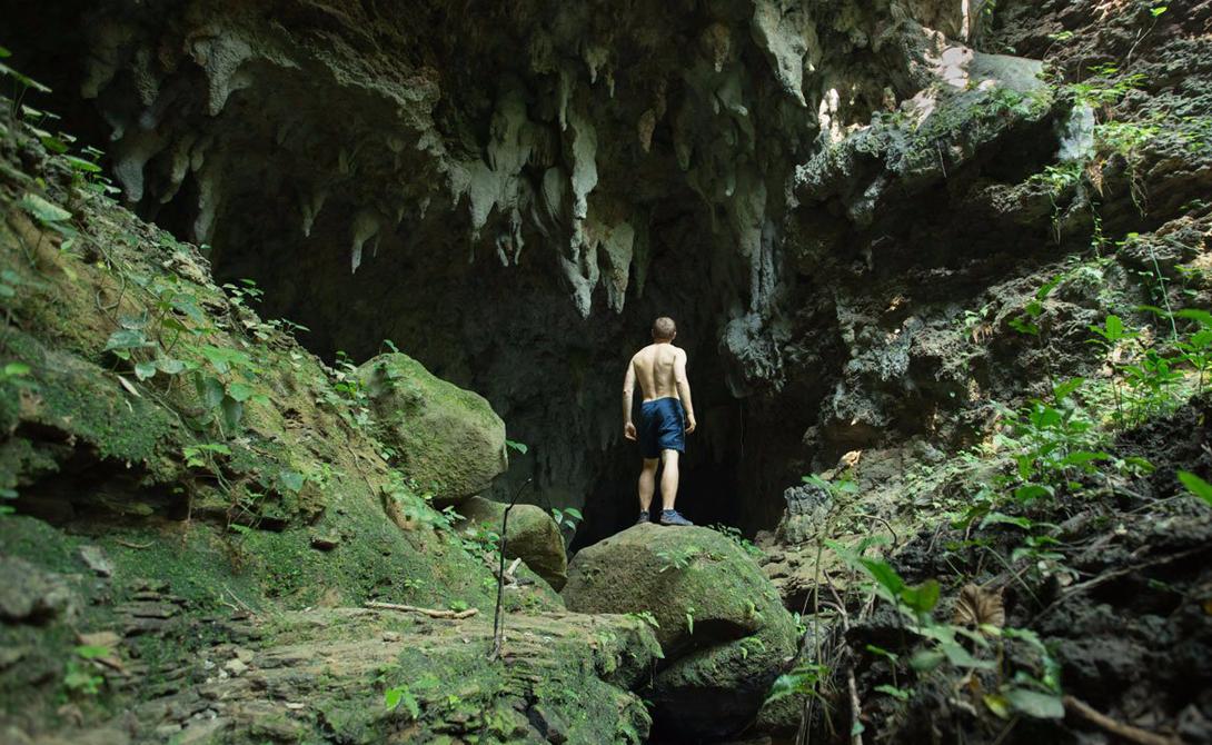 Остров Ириомотэ Япония Здесь путешественник будет ощущать себя хозяином целого леса. Почти 90