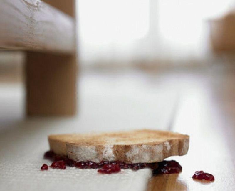 Ученые доказали, что «правило 5-ти секунд» для упавшей еды ошибочно