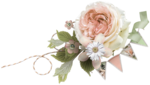 Peach Love Elements (5).png