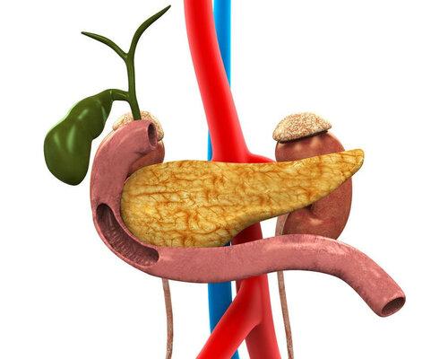 Что за болезнь панкреатит