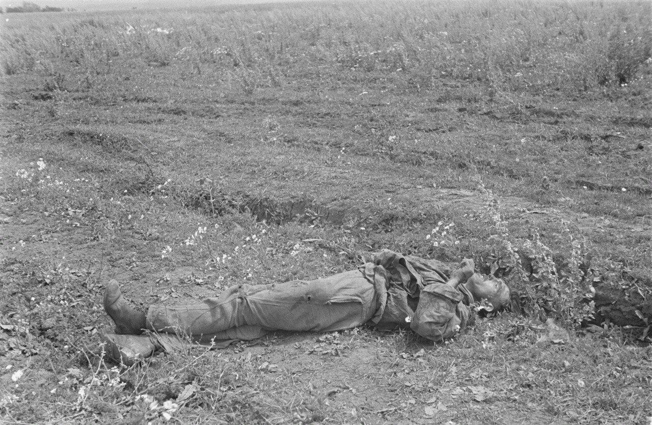 После боевых действий. Павший солдат Вермахта