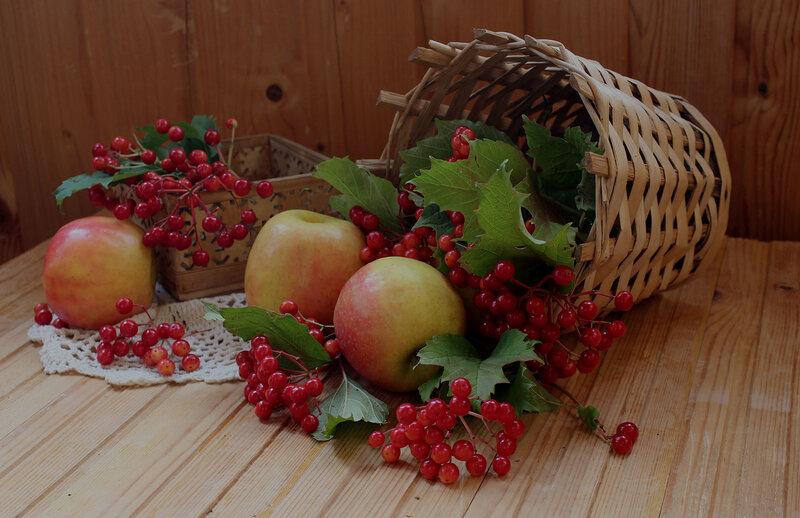 калина и яблоки