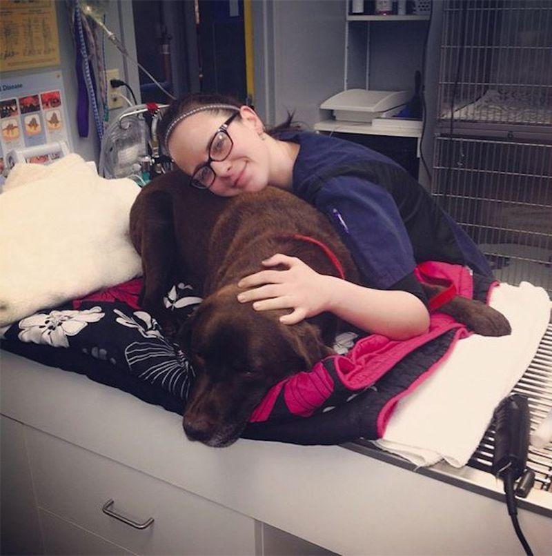 18 доказательств того, что ветеринар — это улетная профессия
