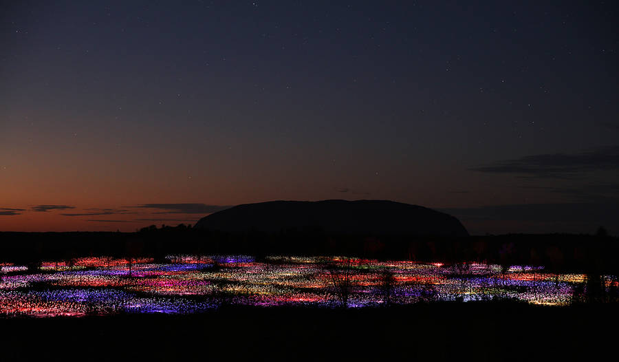 Amazing Field of Lights Installations (14 pics)