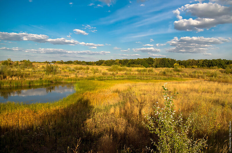 Вид с севера на Монастырский лес, Белгород. Фото Sanchess, 2015