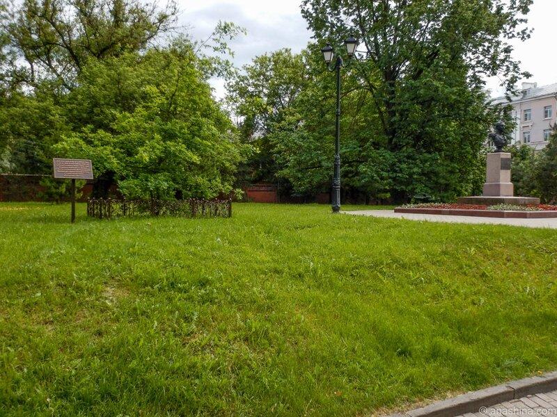 Бюст Кутузова, дуб в честь 200-летия Отечественной войны 1812 года, Сквер Памяти Героев, Смоленск