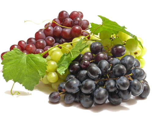 TOUCHING HEARTS: FRUITS - PNG
