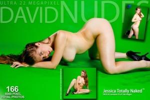 Журнал Журнал Dανіd-Νudεs - ...