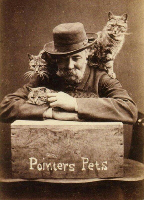 Гарри Пойнтер — человек, который придумал снимать котиков. На фото он со своими кошками.