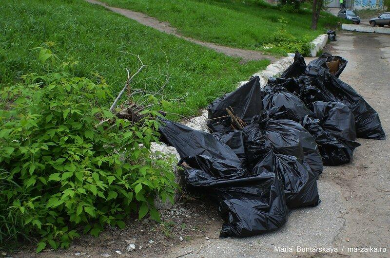 Чистый берег, Саратов, 13 мая 2015 года