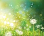 spring_2015_#2 (1) [преобразованный]