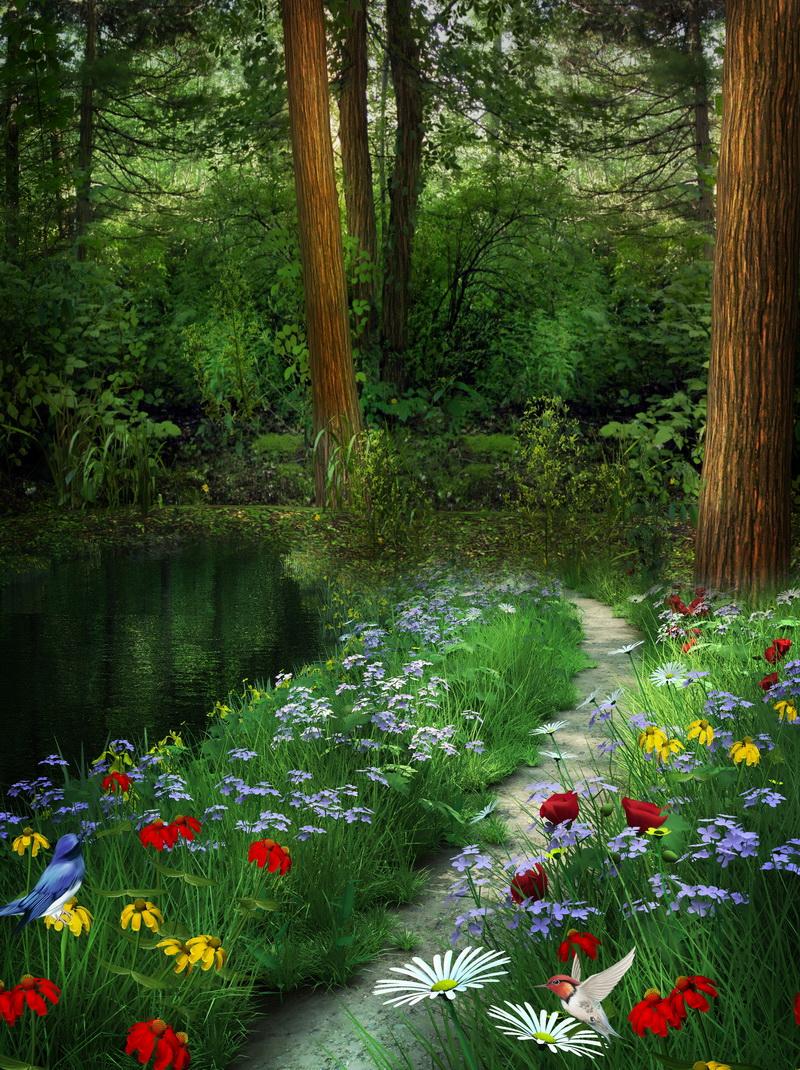 Фото Тропинка вдоль реки, идущая в лес, на которой растут цветы и на них сидят птицы ( zmeiy),Добавлено...