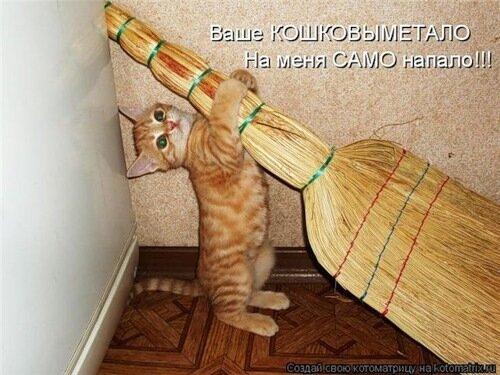 http://img-fotki.yandex.ru/get/55/c-olia2009.a/0_2a219_fc24647a_L.jpg