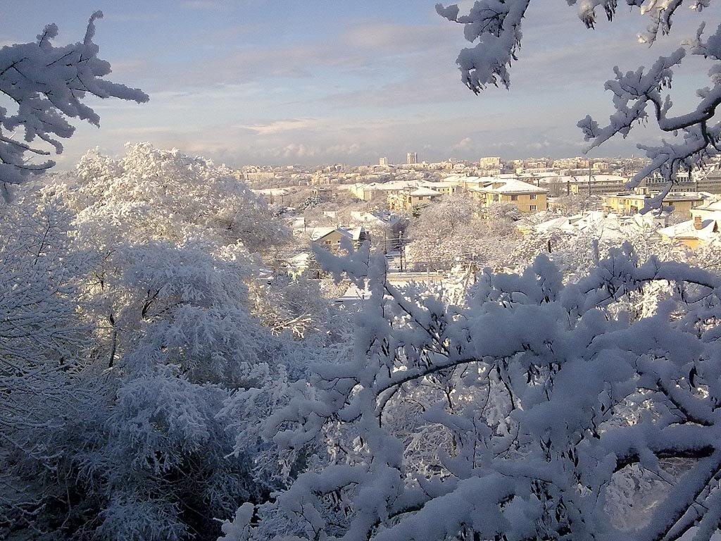 севастополь зимой фото отель