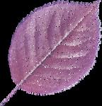 NLD Leaf tulle 2.png