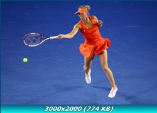 http://img-fotki.yandex.ru/get/5500/13966776.44/0_773eb_a79e802f_orig.jpg