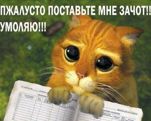 http://img-fotki.yandex.ru/get/5500/26873116.0/0_6bd0b_e91e1e38_L.jpg