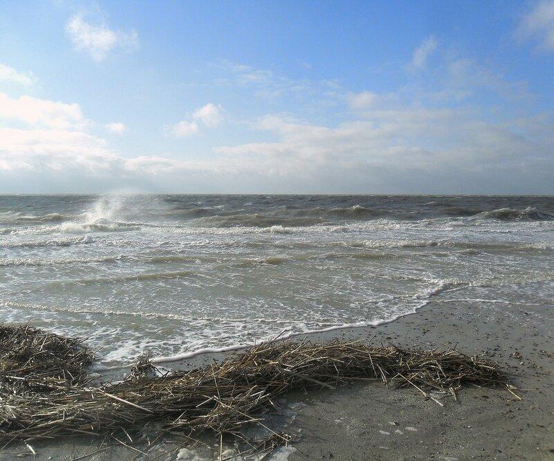 Добро пожаловать ! ... Март, Азовское море, волны, ветер