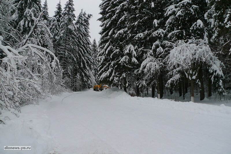 2011.01.29 - Лыжи(Пансианат Звенигородский)