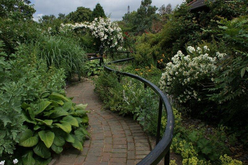 Фруктовый сад на даче фото