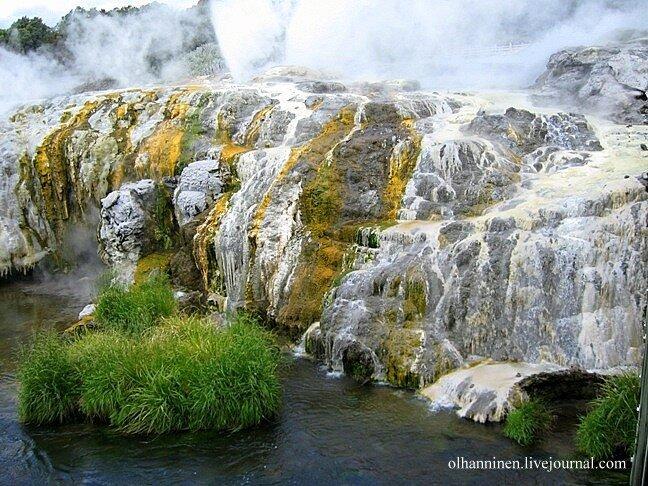 термальный_парк Te_Puia  долина_гейзеров Вакареварева Роторуа Новая_Зеландия гейзер природа