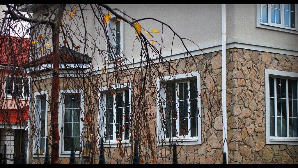 http://img-fotki.yandex.ru/get/5500/sergey-2021.a/0_4a057_20e36dc9_XXL.jpg