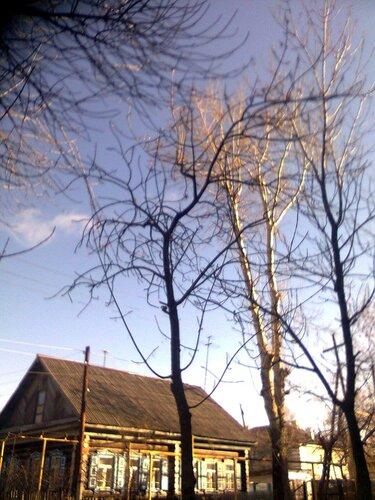 Седьмого ноября была отличная погода